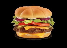 Cheese Burger & Fries